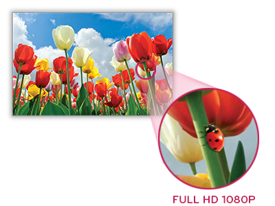 lg-monitor-EA83-feature-img-detail_Full_hd