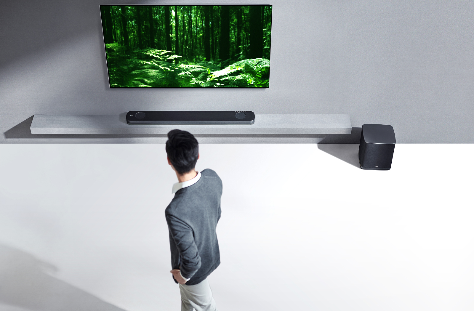 LG OLED TV dolby atmos