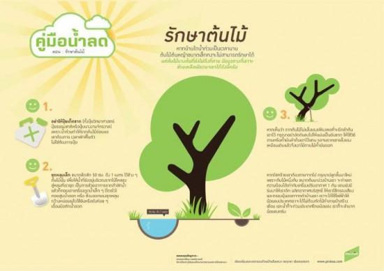 วิธีช่วยต้นไม้ให้อยู่รอดหลังโดนน้ำท่วม