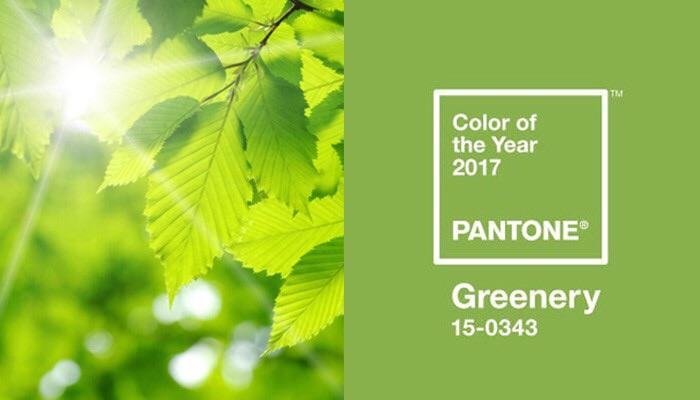 สีเขียว Greenery มาแรงแซงทางโค้งในปี 2017