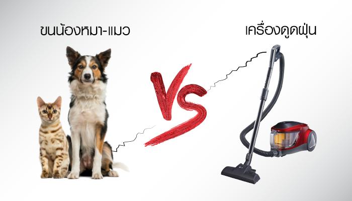 ขนน้องหมา-แมว VS เครื่องดูดฝุ่น.. ปัญหาของคนเลี้ยงสัตว์